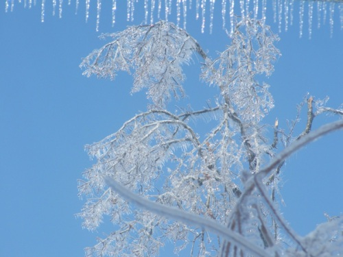 ice-storm-email-5